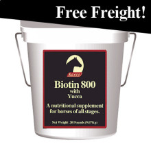 Biotin 800 Powder